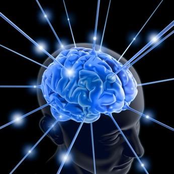 Forscher raten: Wer seine Gehirnleistung verbessern will, sollte eine Sache nicht mehr tun